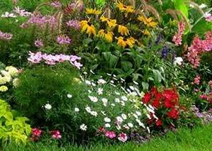 Terraturflandscape Featured4 Flowerplanting