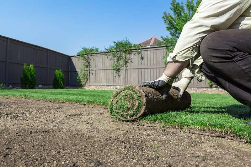 Bigstock Installing New Lawn 61342637 1