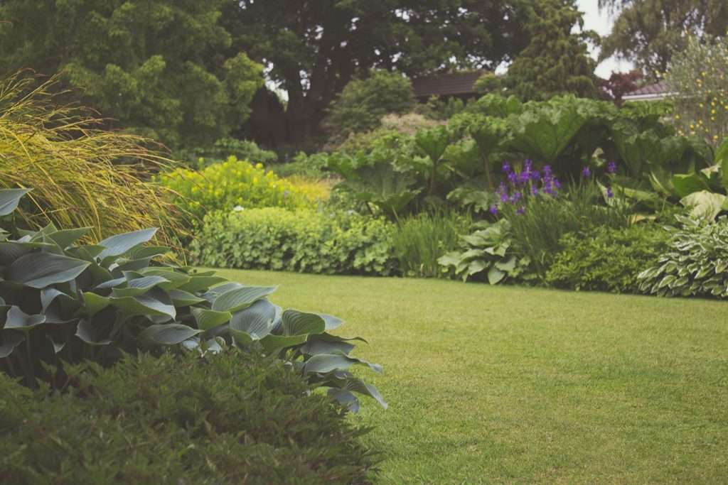 Garden 7283